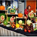 Święto Hal Targowych w Gdyni
